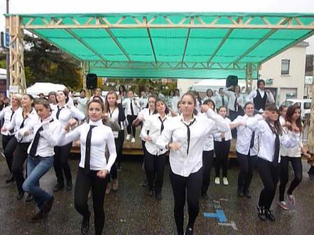 Foire St Martin 2012